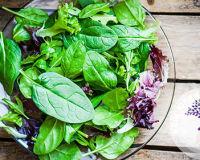 Зелёные листовые овощи список и в чём польза для организма