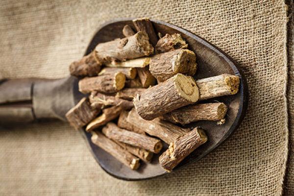 Лечебные свойства и противопоказания корня солодки