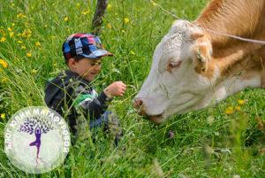 Корова и ребенок