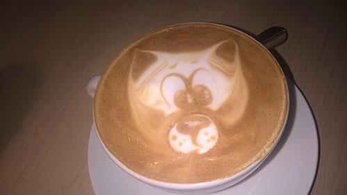 Кот на пене в чашке латте