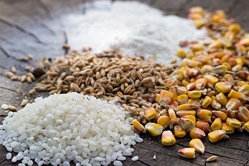 Рис пшеница и кукуруза