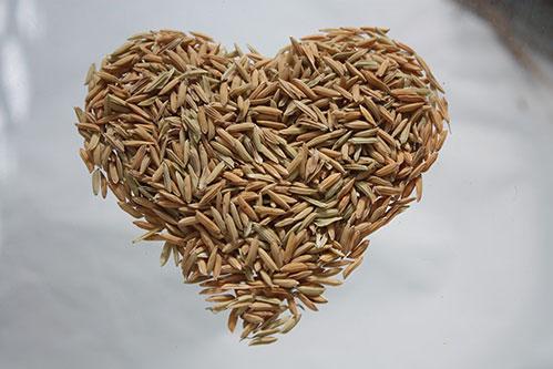 Рисовое сердце